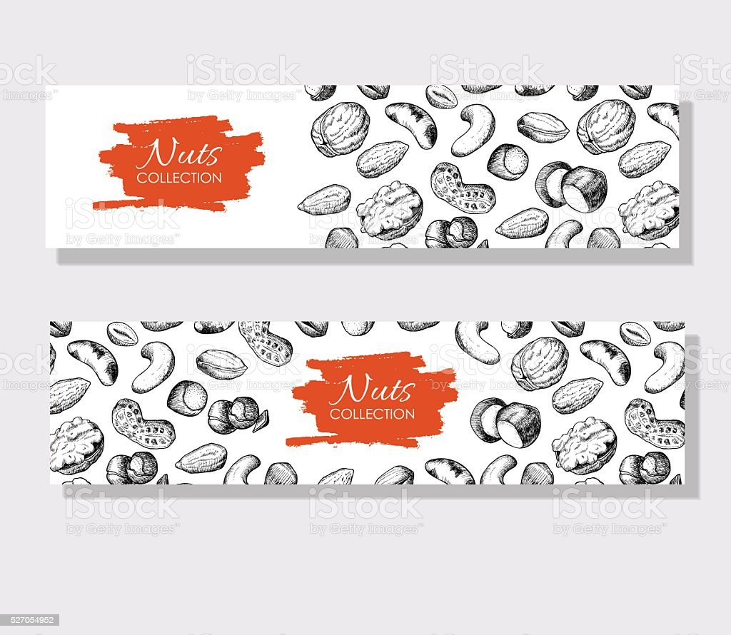 Vector hand drawn nuts banners. Engraved detailed illustrations. vector art illustration