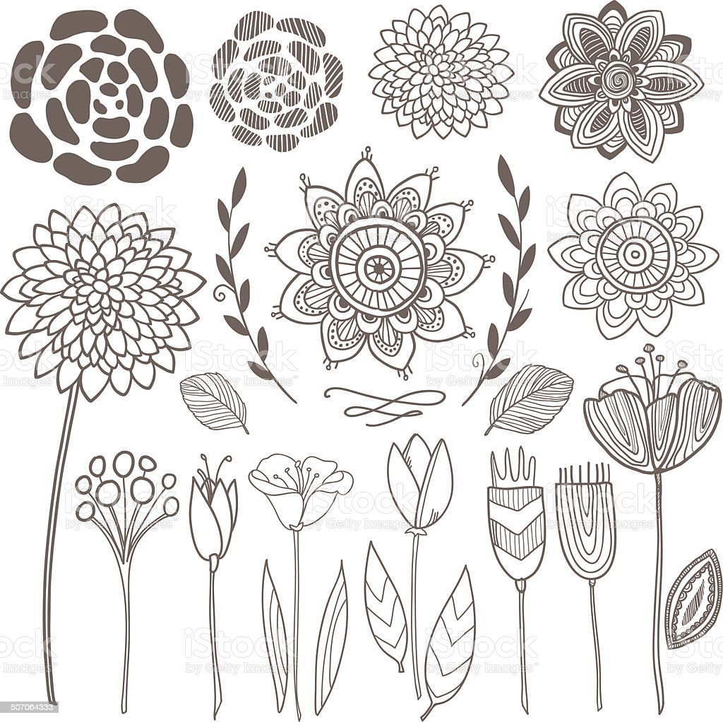 Vector hand drawn vintage floral elements vector art illustration