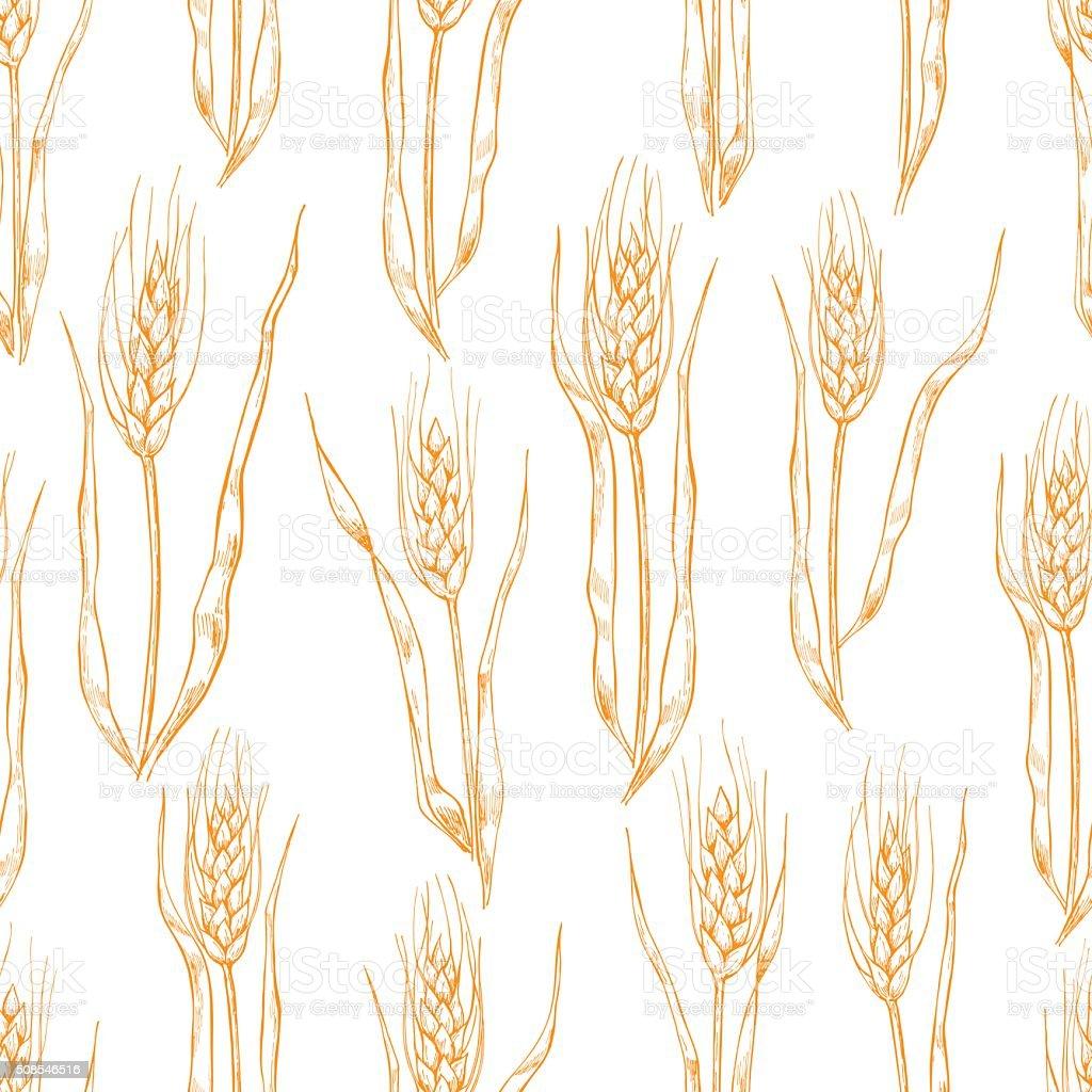 Vector hand drawn wheat ears seamlless pattern. vector art illustration