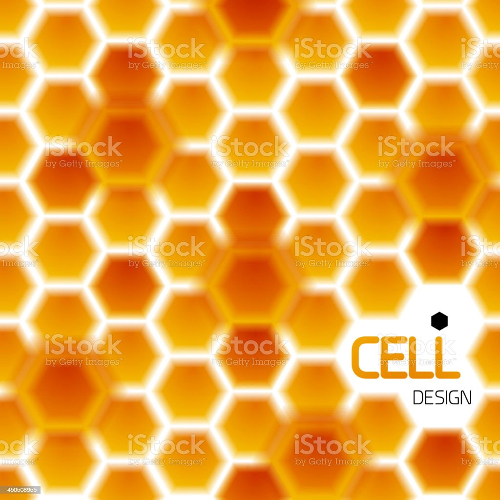 Vector honey bee's cells royalty-free stock vector art