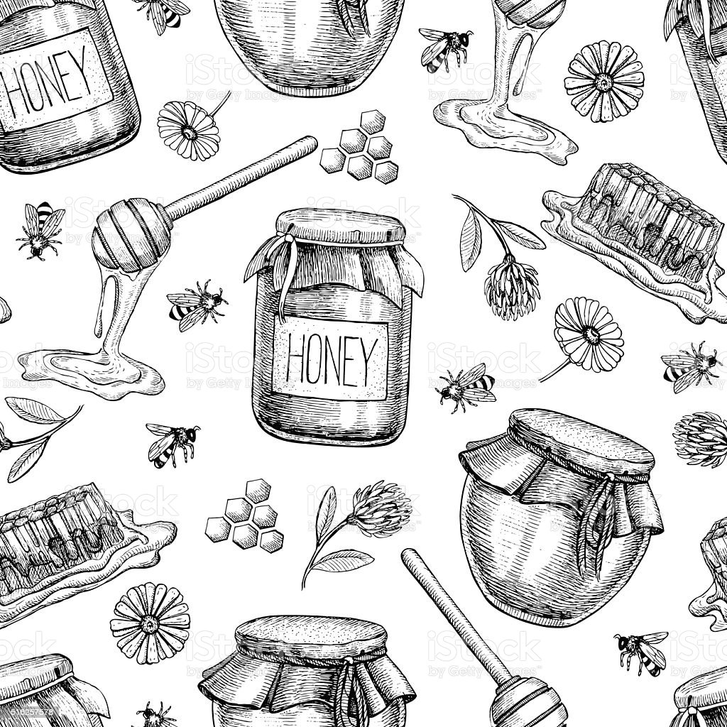 Vector honey seamless pattern. Vintage hand drawn background. vector art illustration