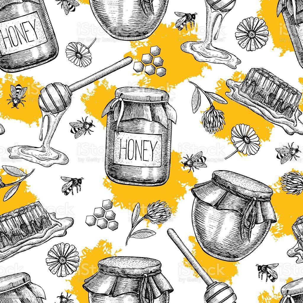 Vector honey seamless pattern. Vintage hand drawn background. vector art illustration