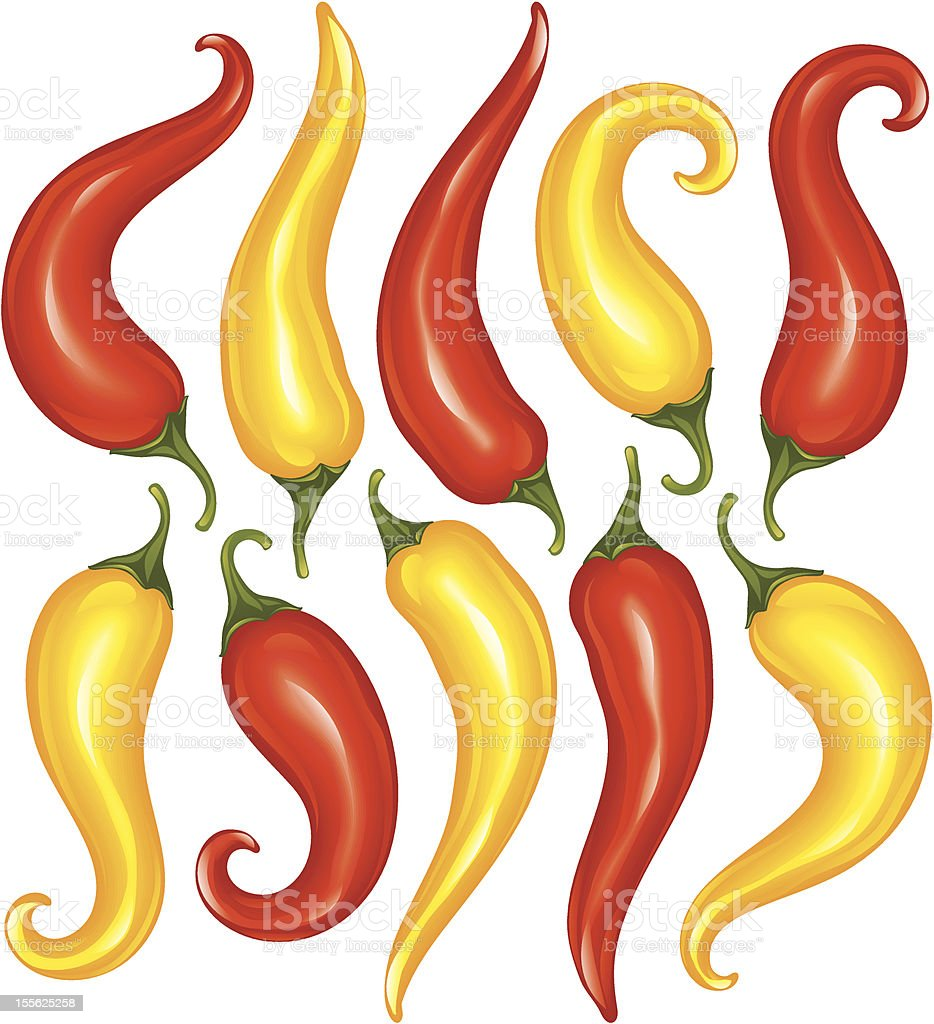 Vector Hot chilli pepper set isolated on white background royalty-free stock vector art