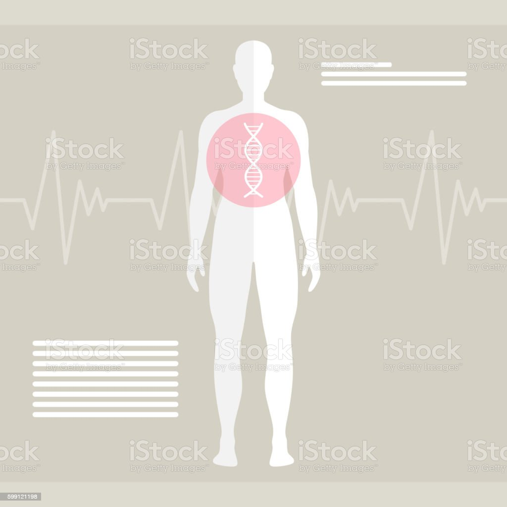 Vector Human DNA vector art illustration