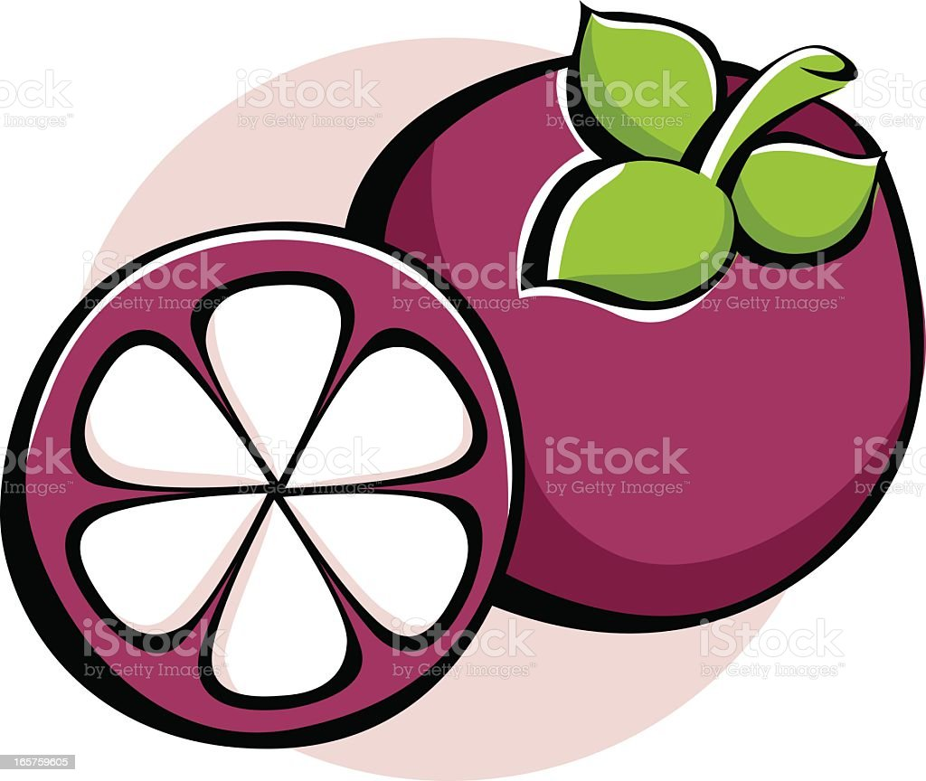 Vector Icon of a Mangosteen Fruit Isolated on White Background. royalty-free stock vector art