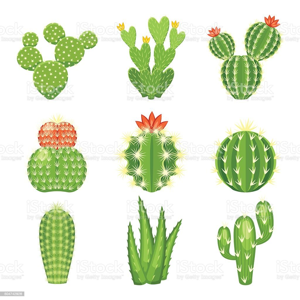 Vector icon set of colored cactus and succulent vector art illustration