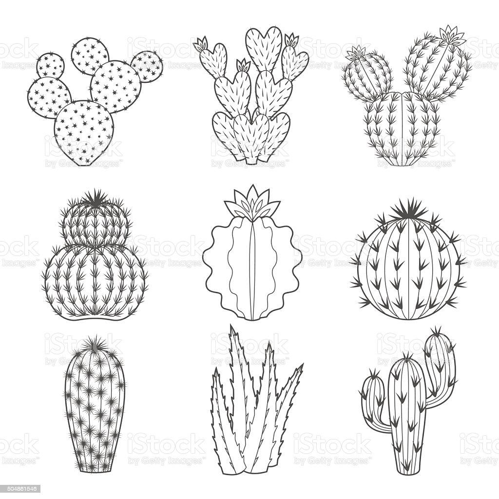 Vector icon set of contour cactus and succulent vector art illustration