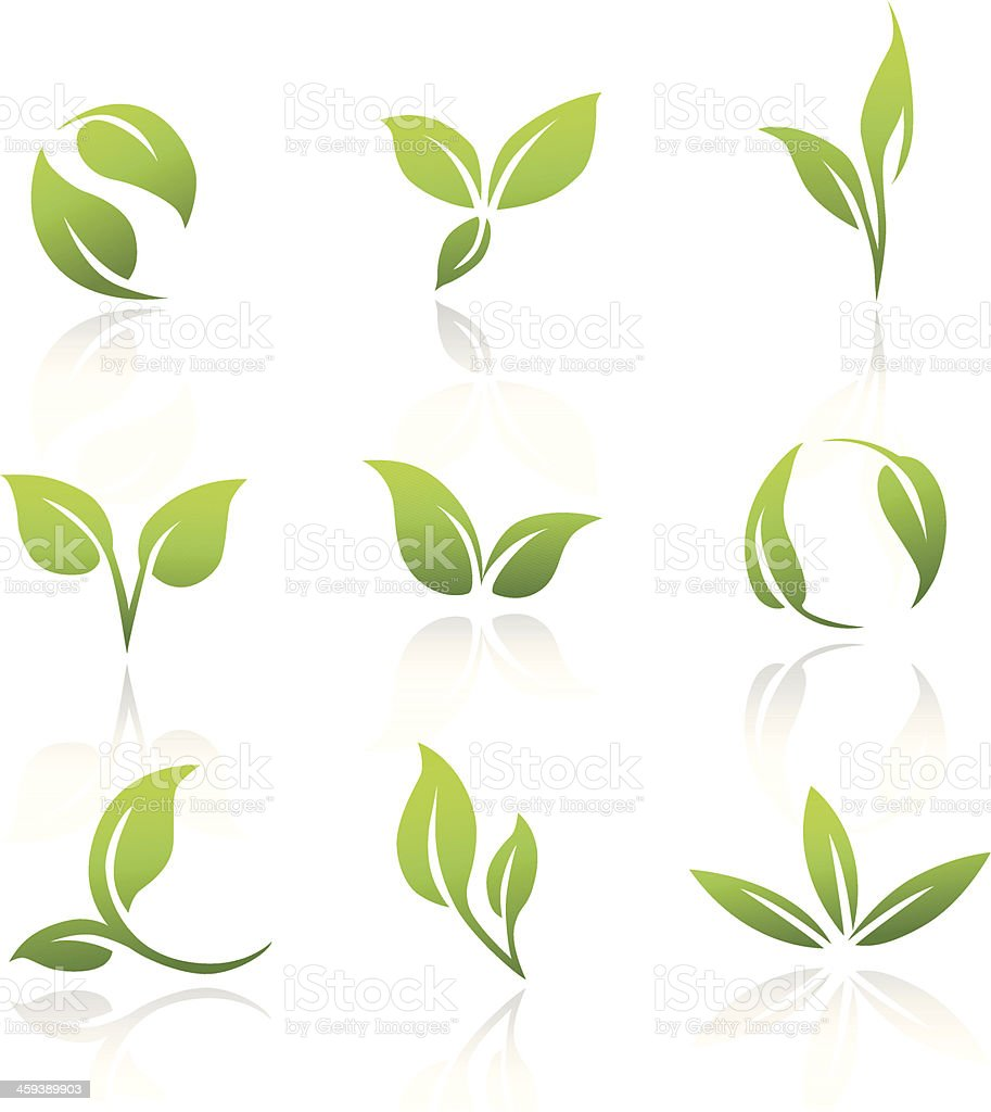Vector Icons - Green Leaves vector art illustration