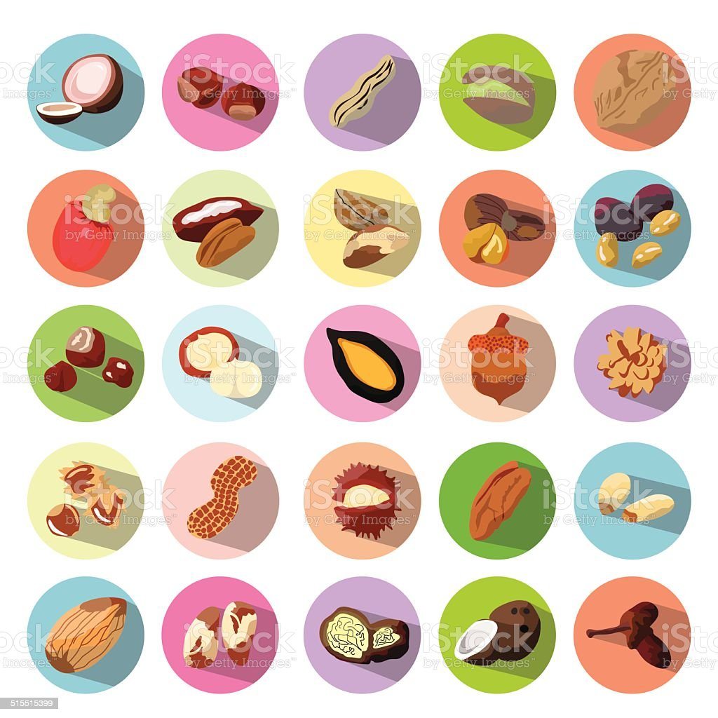 Vector Icons of Beans, Nuts, Seeds. Illustration eps10 vector art illustration