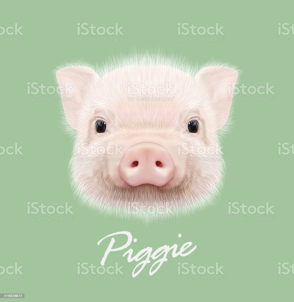 Vector illustrated portrait of farm pig. vector art illustration