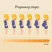Vector illustration about pregnancy