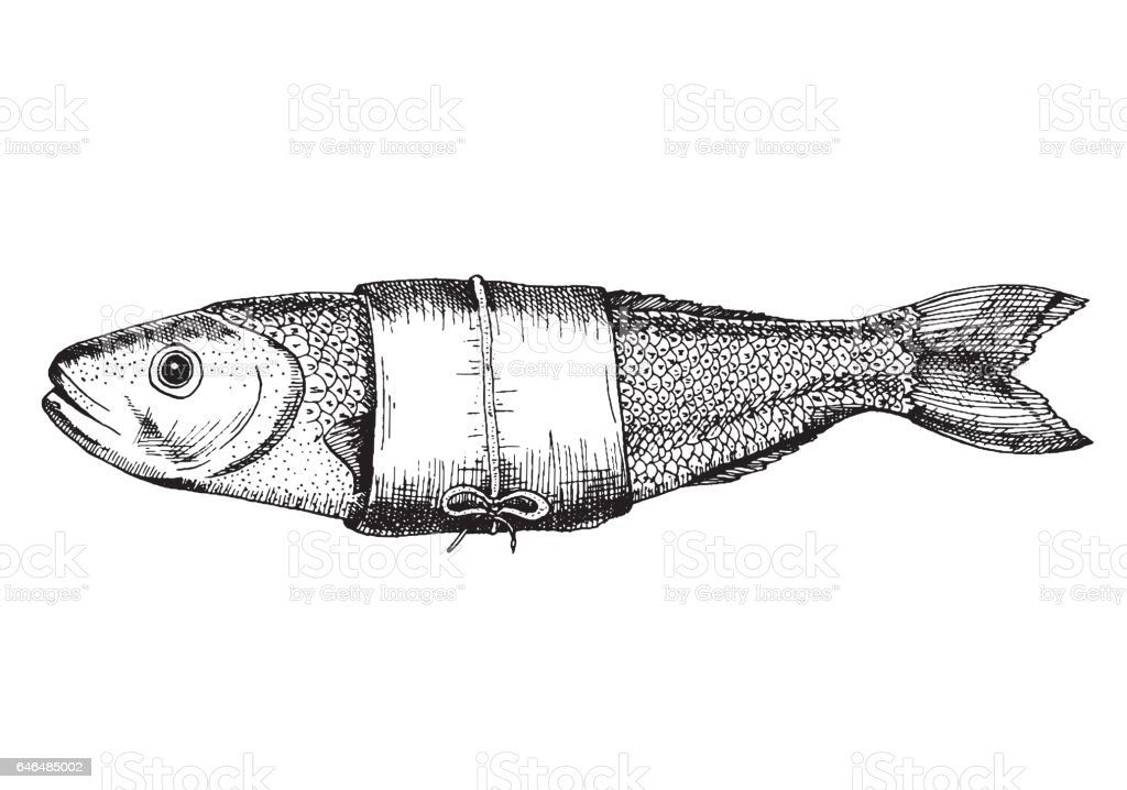 Vector illustration of a perch. Drawn in ink. vector art illustration