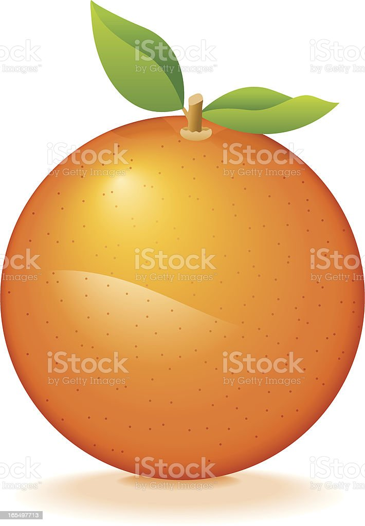 Vector illustration of an orange with two leaves royalty-free stock vector art