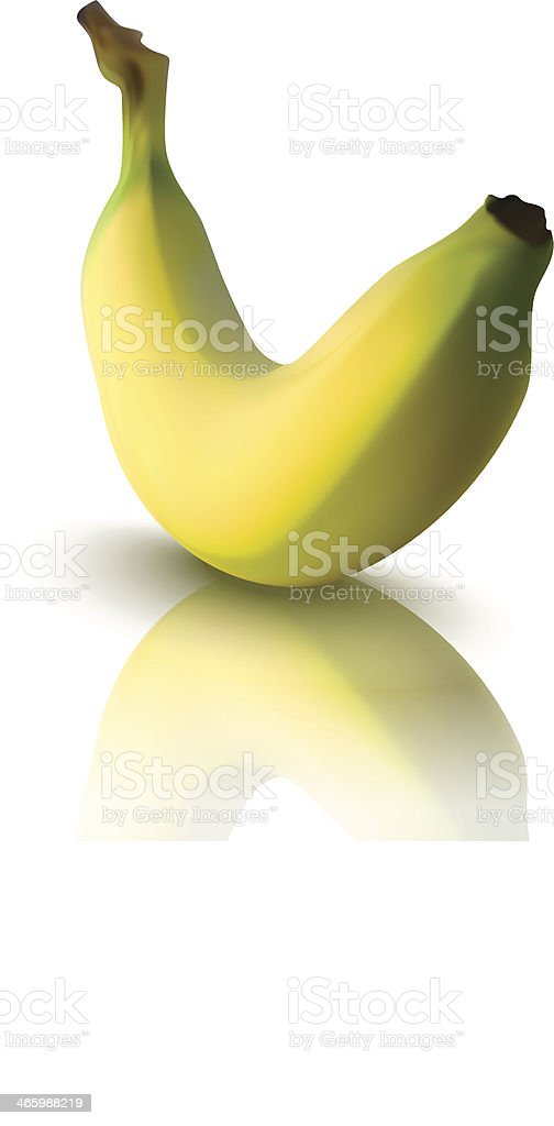 vector illustration of banana with reflection royalty-free stock vector art