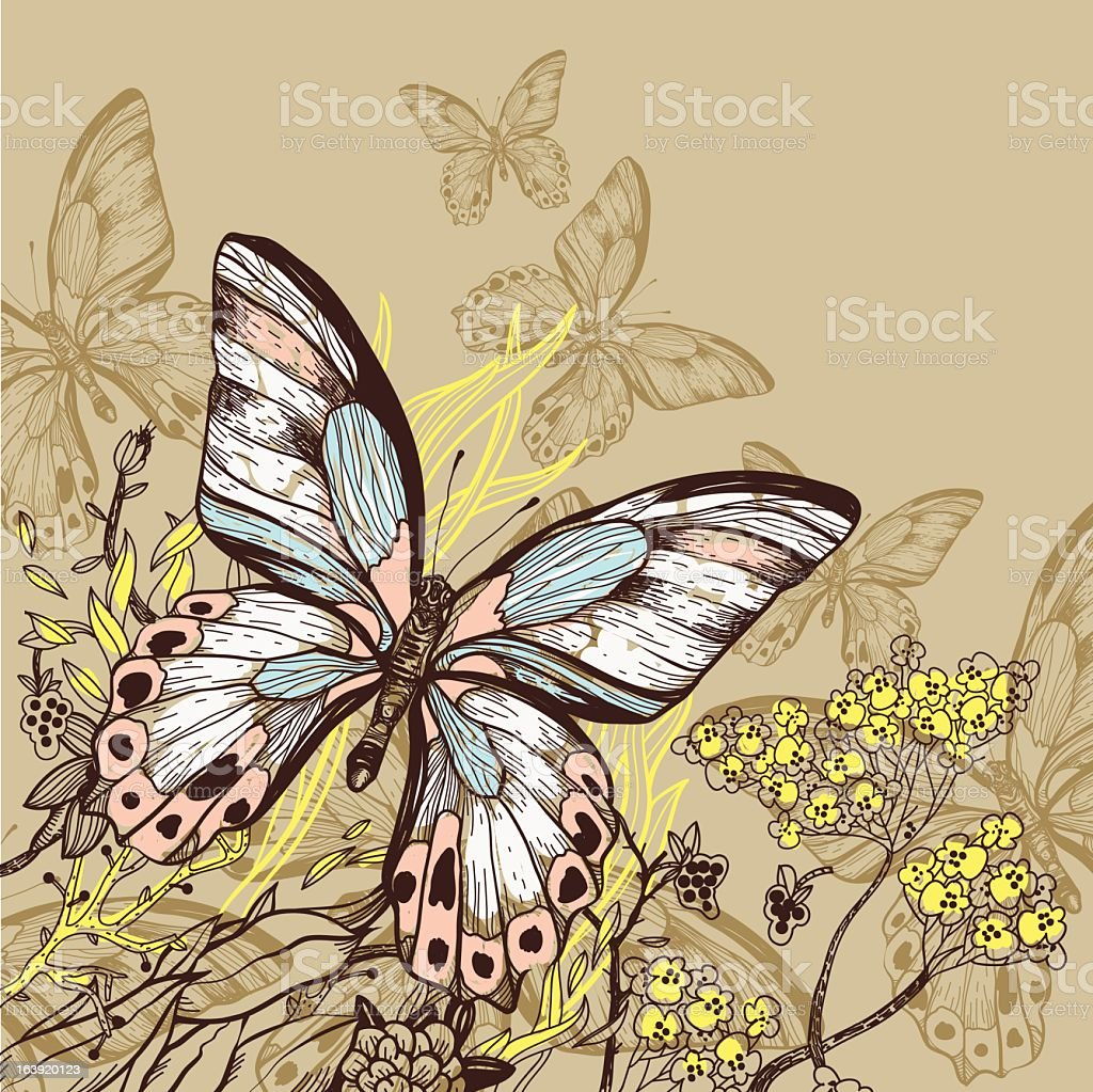 Vector illustration of butterflies and flowers royalty-free stock vector art
