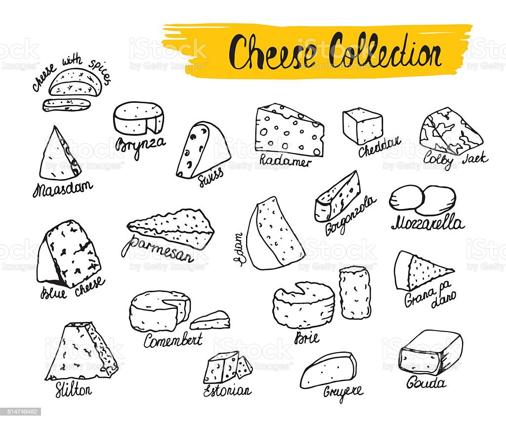 Vector illustration of cheese types in hand drawn style. vector art illustration