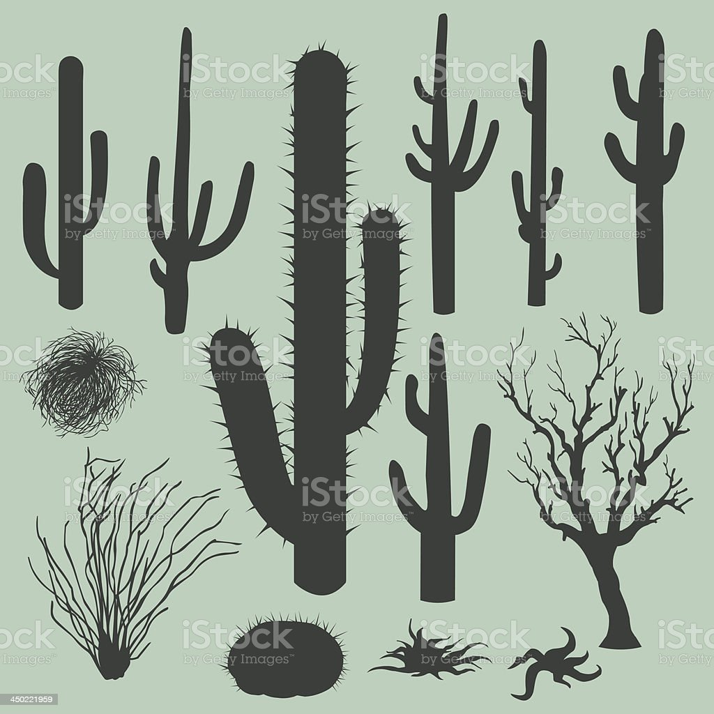 Vector illustration of desert plants vector art illustration