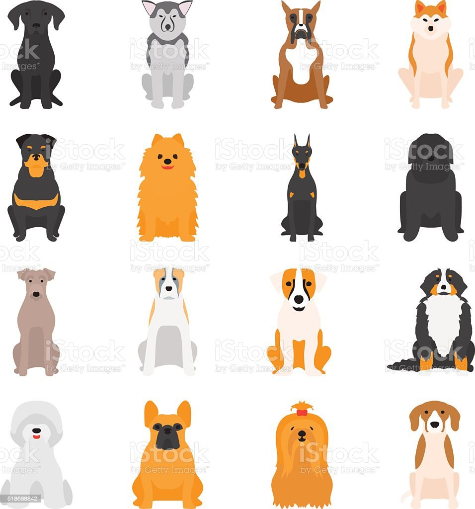 Vector illustration of different dogs breed isolated on white background vector art illustration
