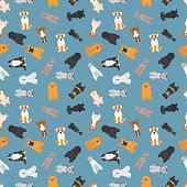 Vector illustration of different dogs breed seamless pattern.
