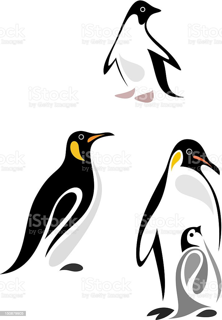 Vector illustration of different types of penguins royalty-free stock vector art