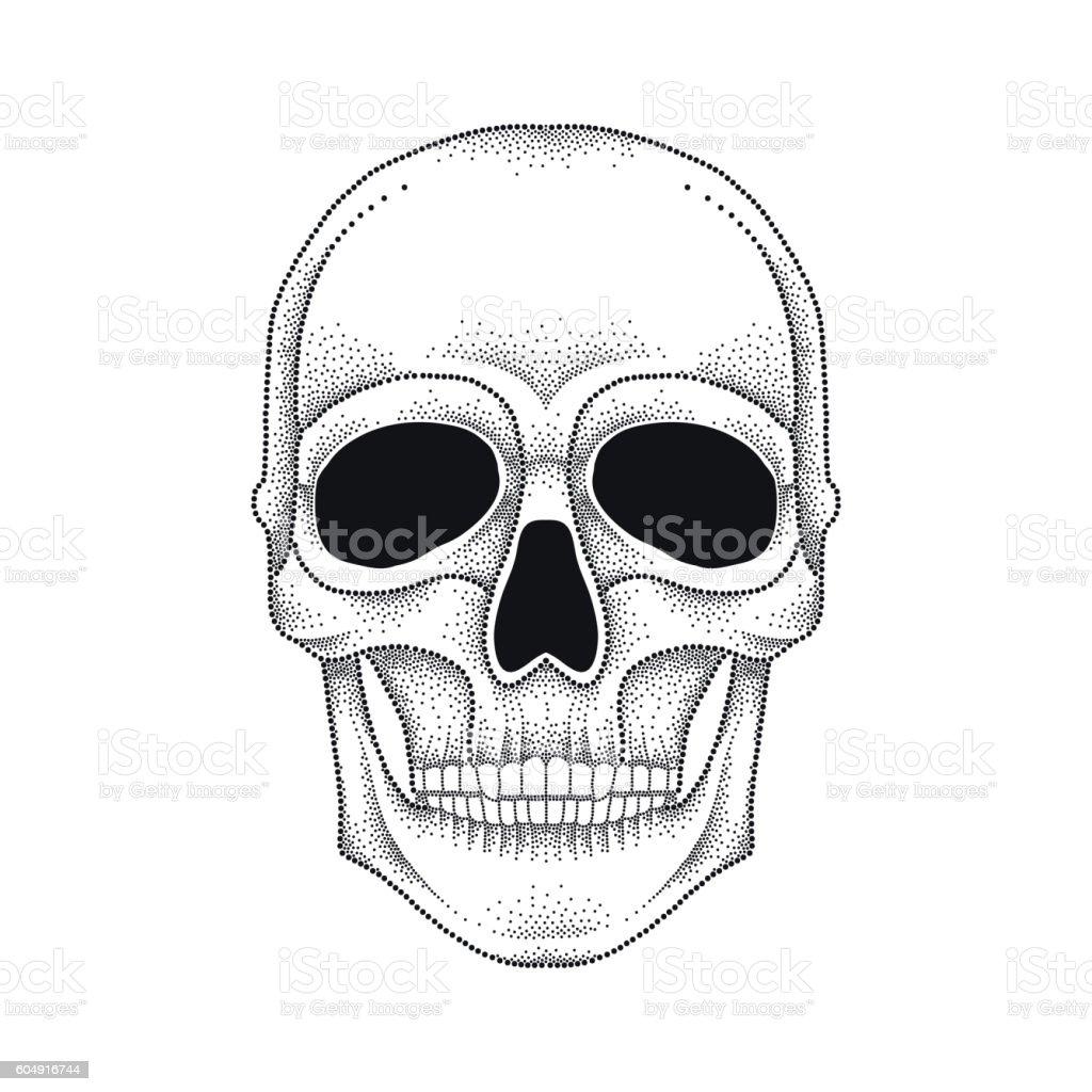 Vector illustration of dotted skull in black isolated. vector art illustration
