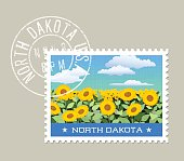 Vector illustration of field of sunflowers, North Dakota