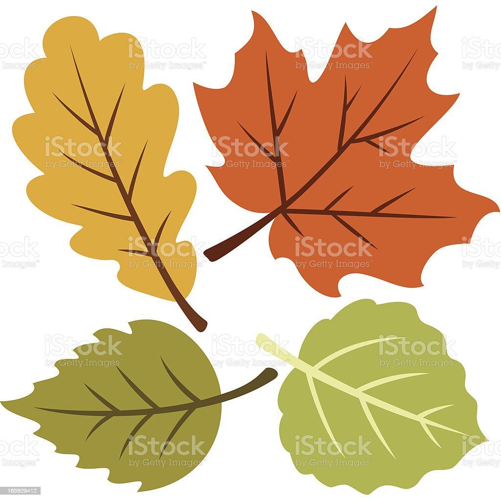 Vector illustration of four autumn leaves vector art illustration