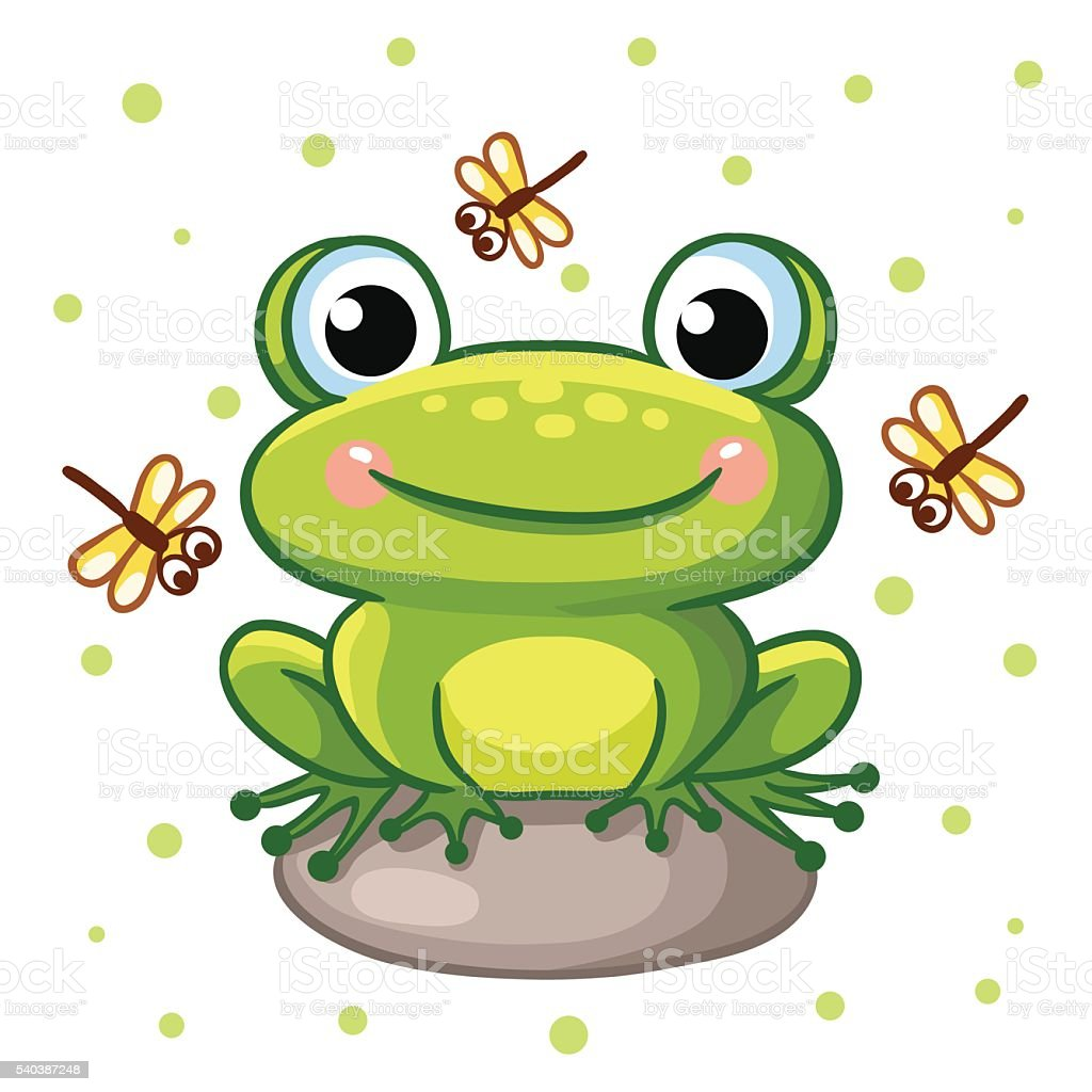 Vector illustration of frog on a rock. vector art illustration