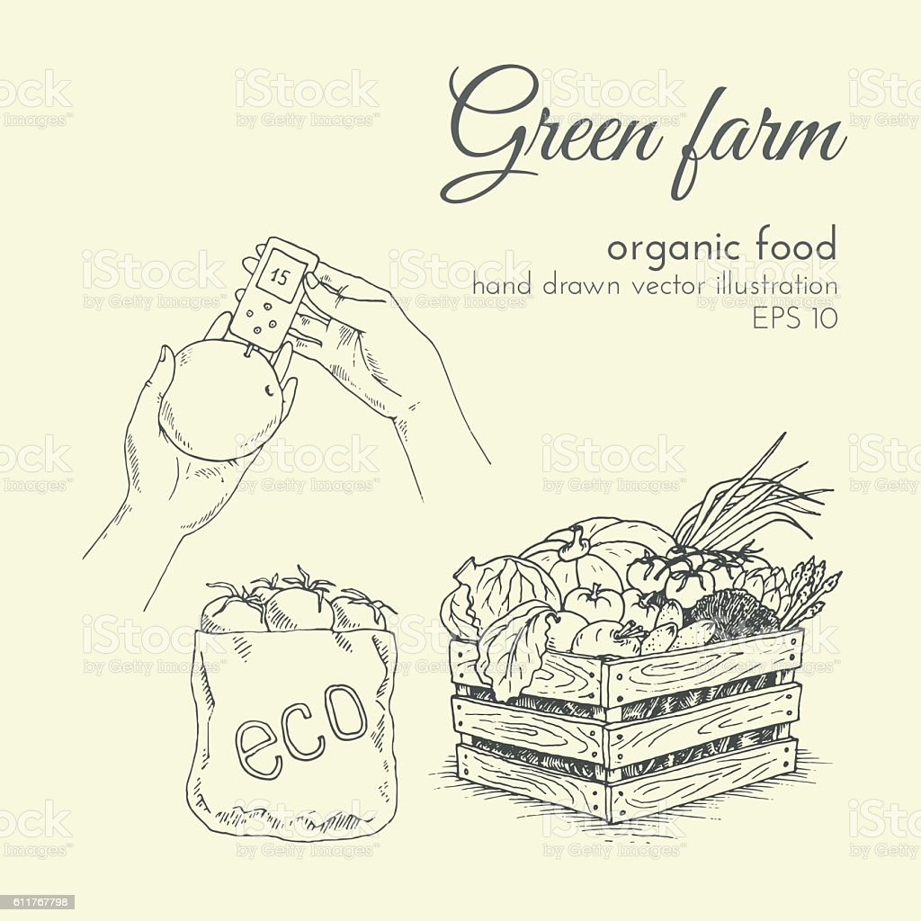 vector illustration of organic products. sketch farmer eco products vector art illustration