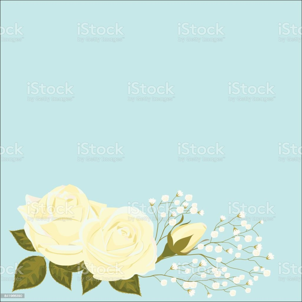 vector illustration of rose flowers with one Bud unblown, with small white flowers, on a background of pastel colors. Greeting card with place for text. vector art illustration