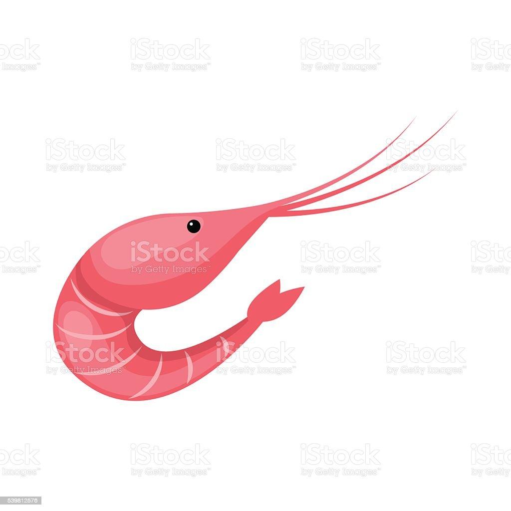 Vector illustration of shrimp vector art illustration
