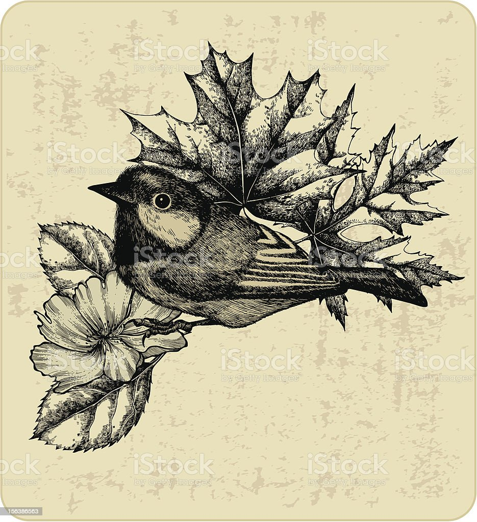 Vector illustration of the bird titmouse, leaves and wild rose. royalty-free stock vector art