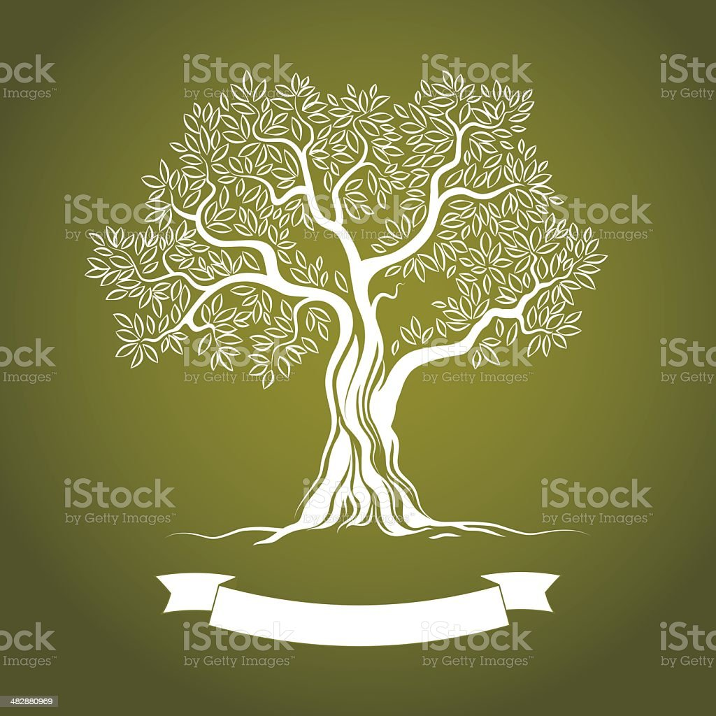 Vector illustration of white olive tree on green vector art illustration