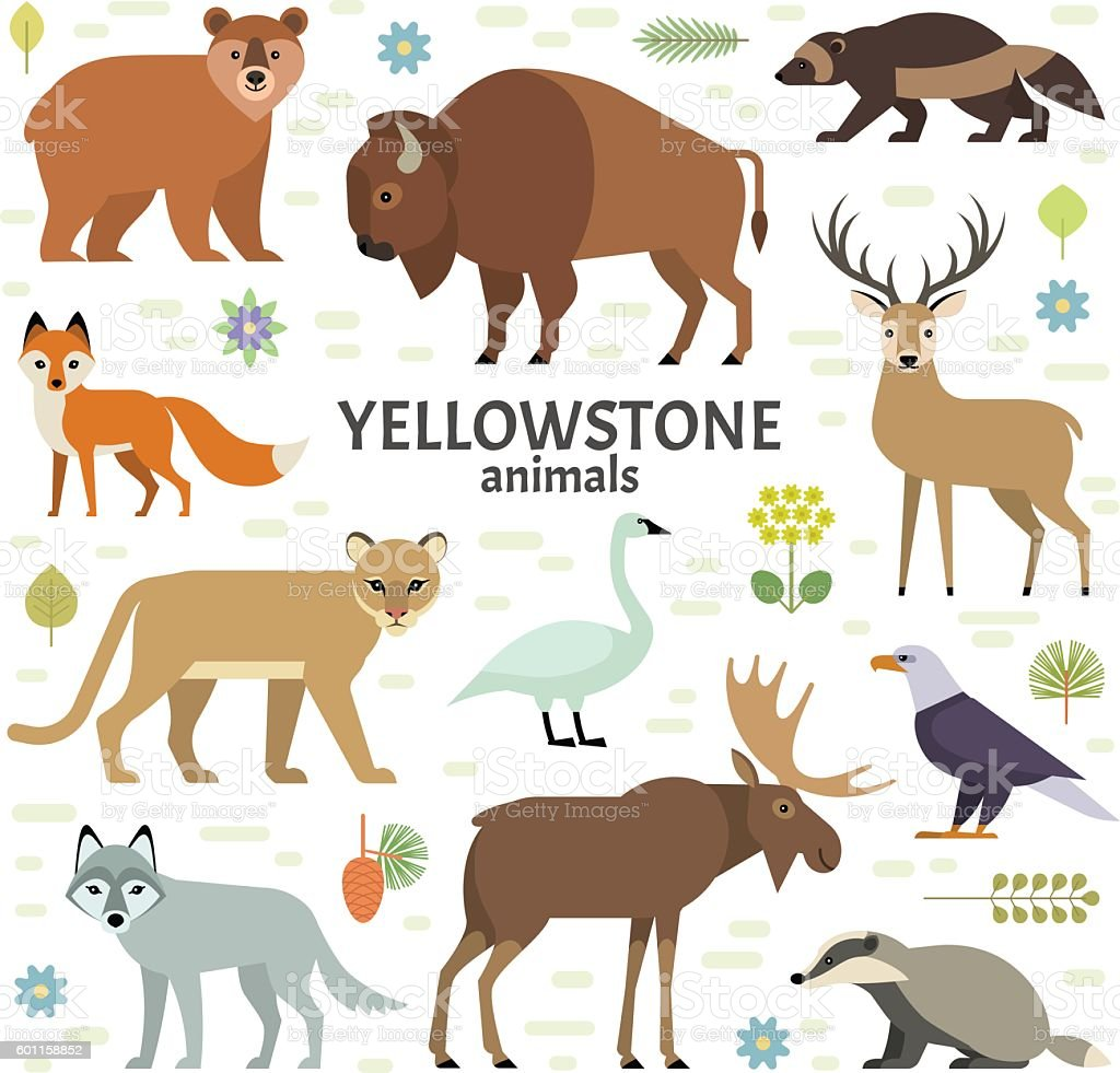 Vector illustration of Yellowstone National Park animals vector art illustration