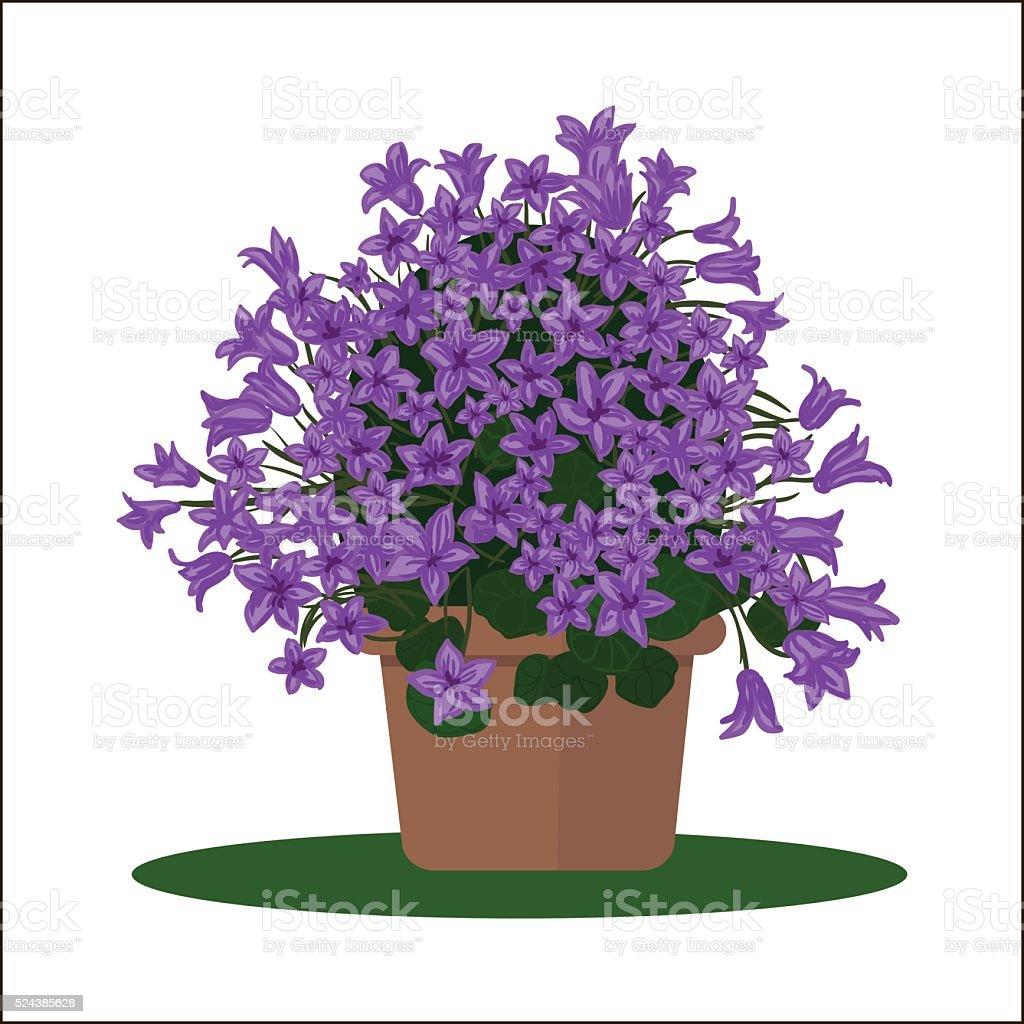 ПечатьVector illustration plant in pot. vector art illustration