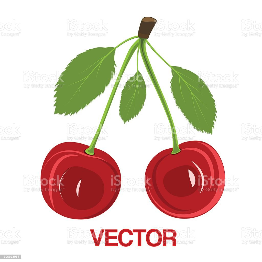 Vector illustration red cherry berries with leaves royalty-free stock vector art