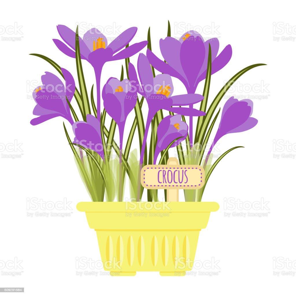 Vector illustration with flower pot vector art illustration