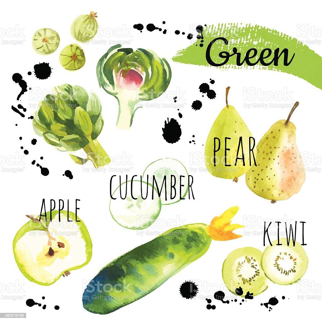 Vector Illustration with only green fruits & vegetables. vector art illustration