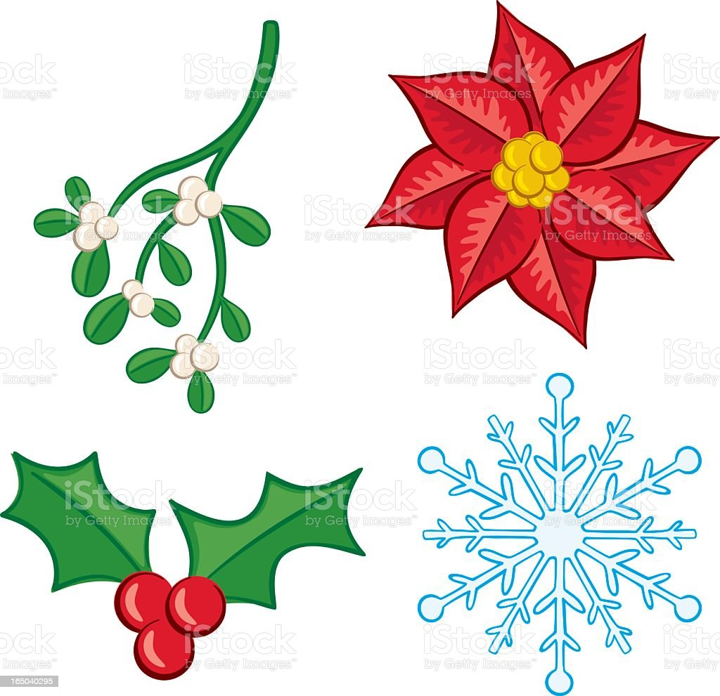 Vector illustrations of holiday plants and snowflake vector art illustration