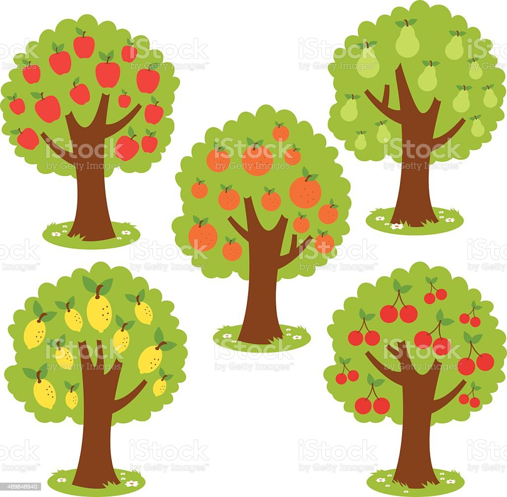 Vector illustrations of various fruit trees vector art illustration
