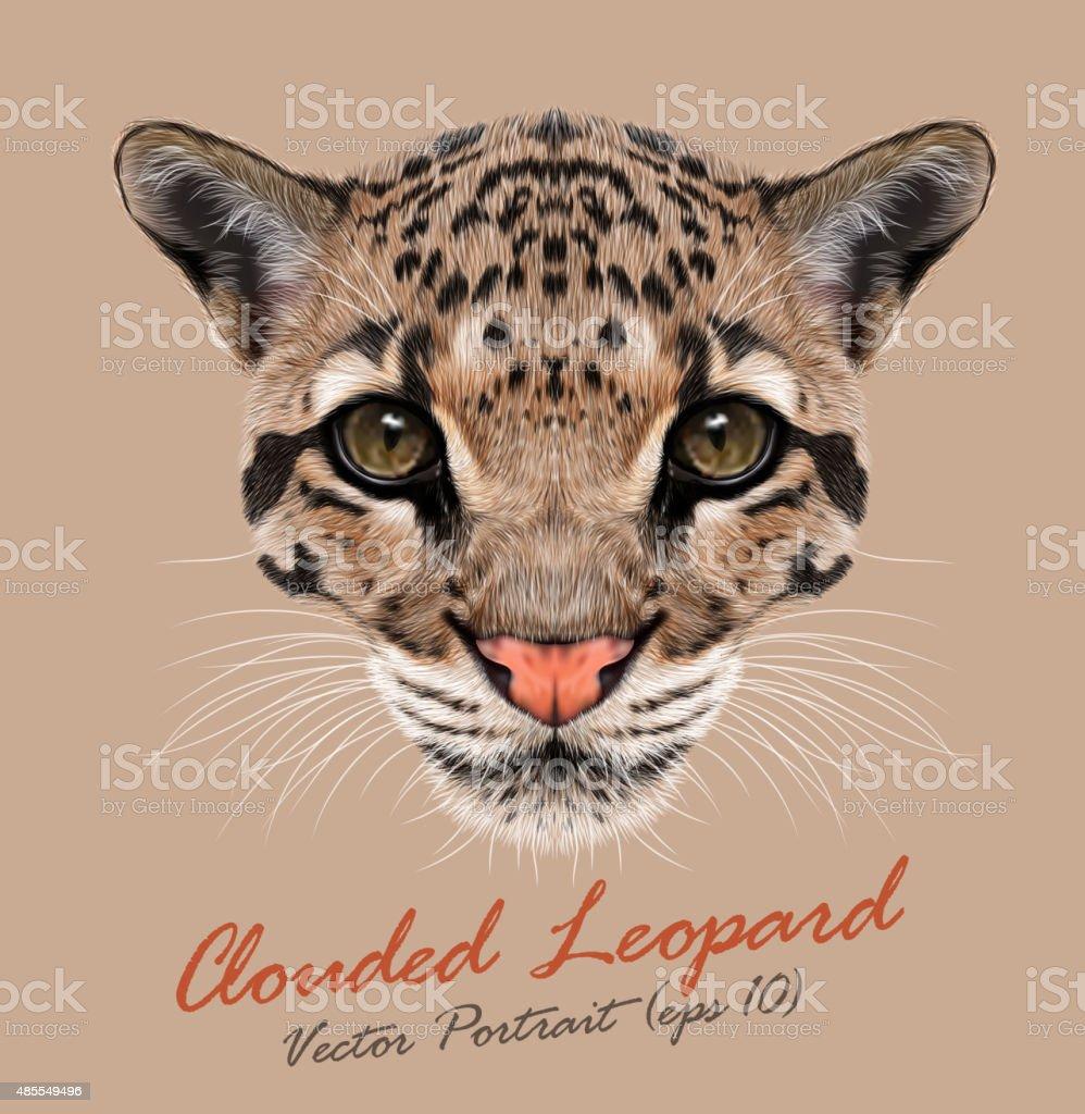 Vector Illustrative Portrait of Clouded Leopard. vector art illustration