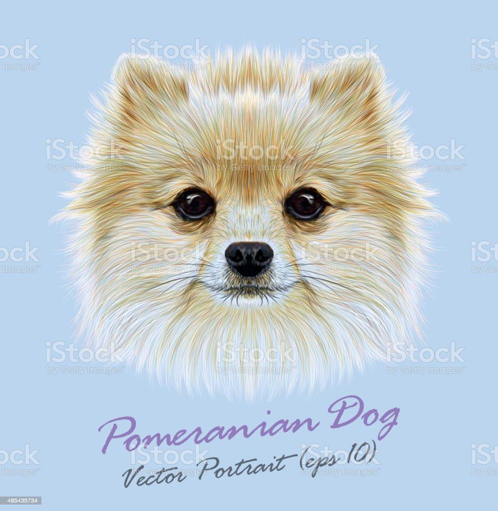 Vector Illustrative Portrait of Pom Pom vector art illustration