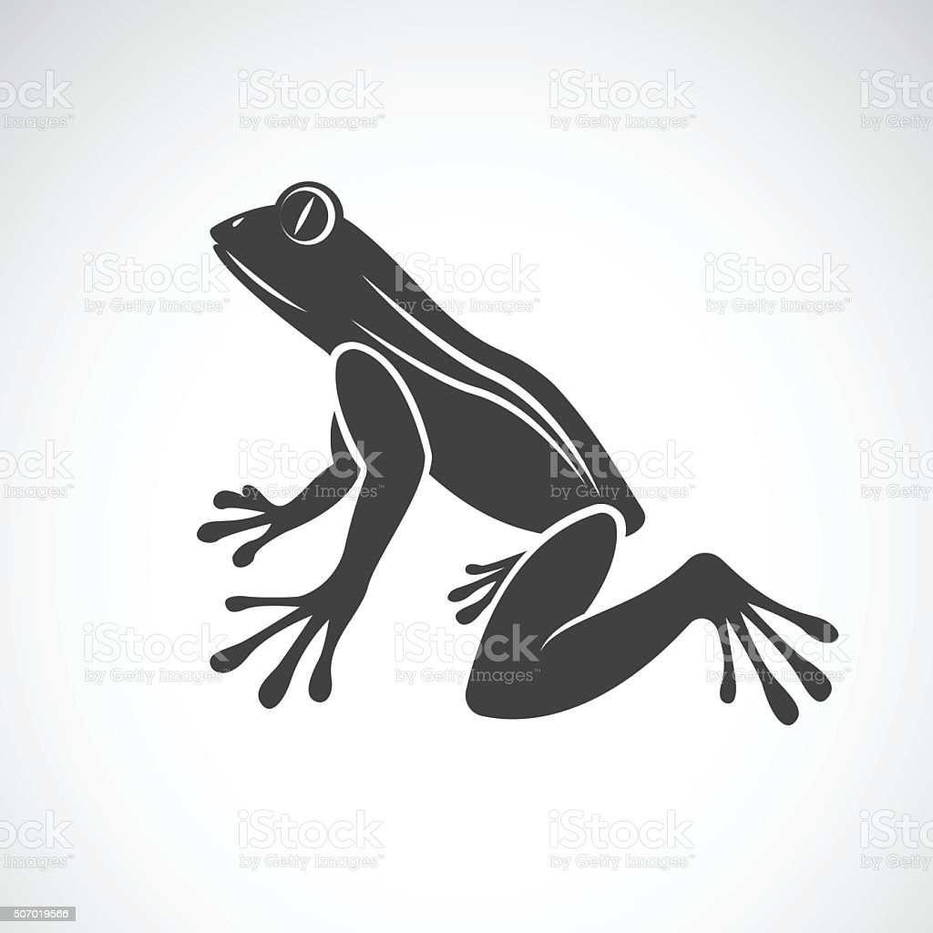 Vector image of a frog design vector art illustration