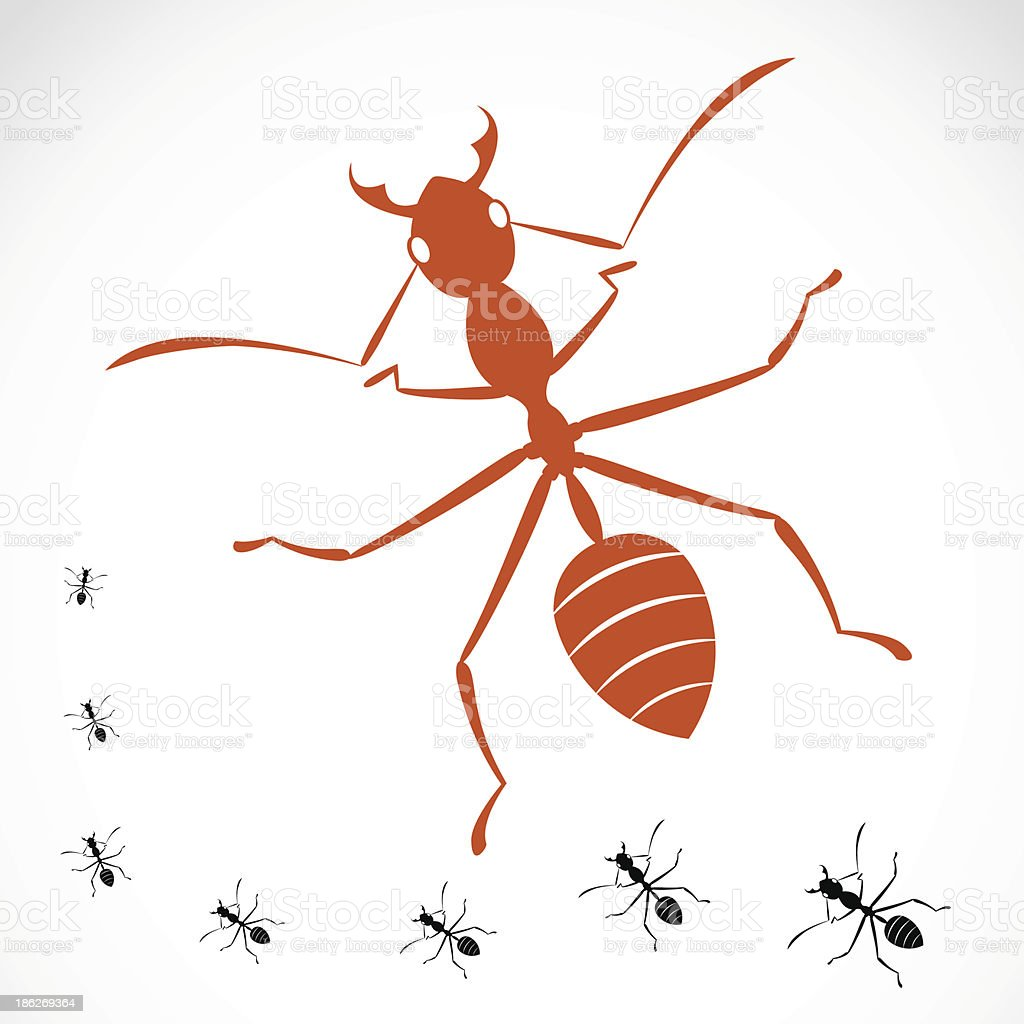 Vector image of an ant royalty-free stock vector art