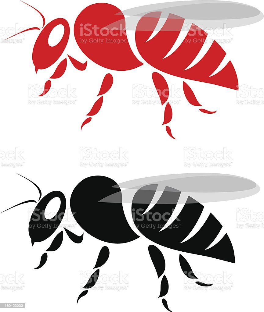 Vector image of an bee vector art illustration