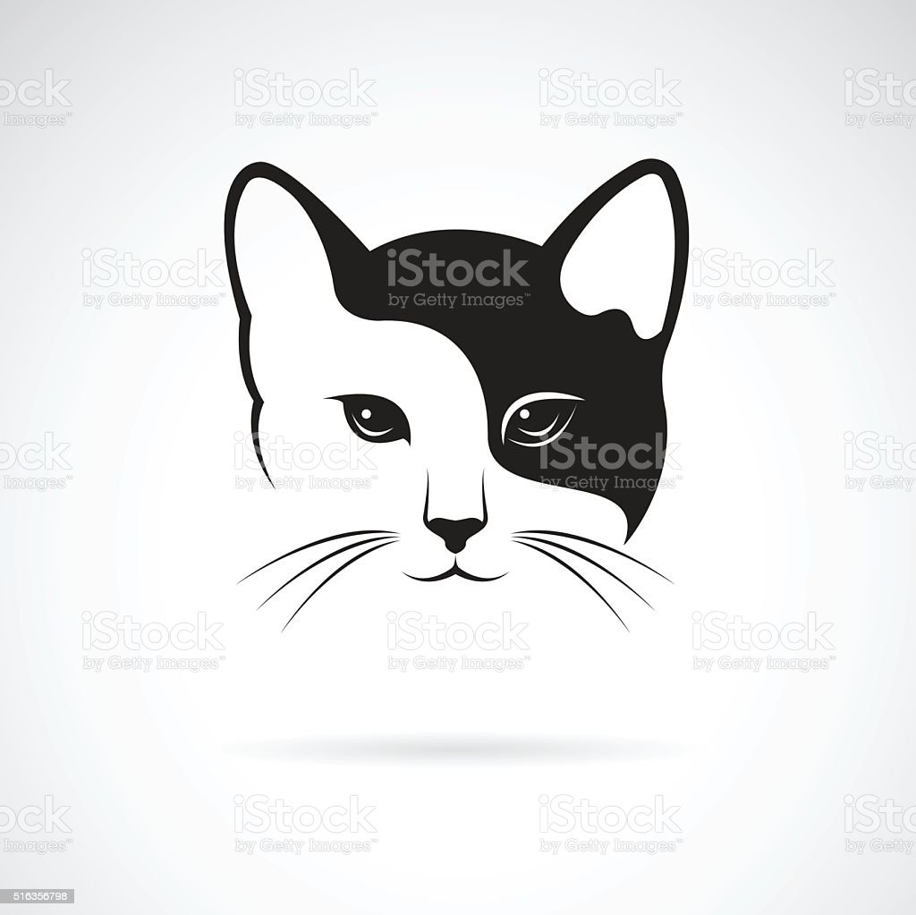 Vector image of an cat face design vector art illustration