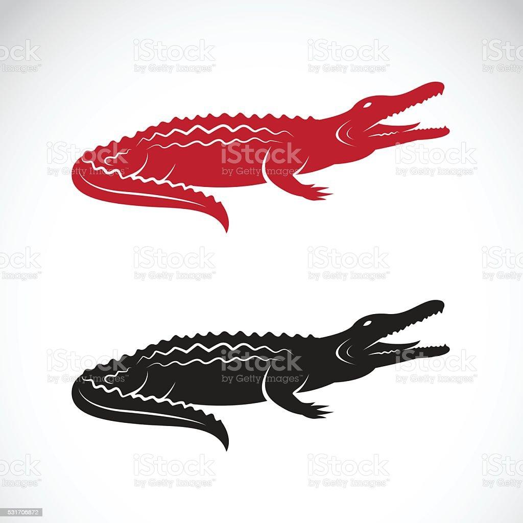 Vector image of an crocodile design vector art illustration