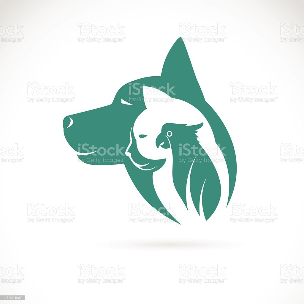 Vector image of an dog cat and bird vector art illustration