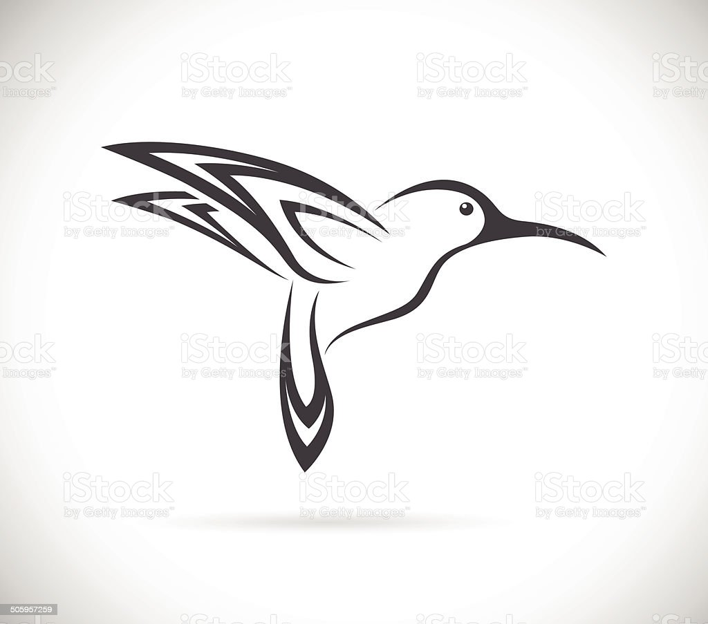 Vector image of an hummingbird design vector art illustration