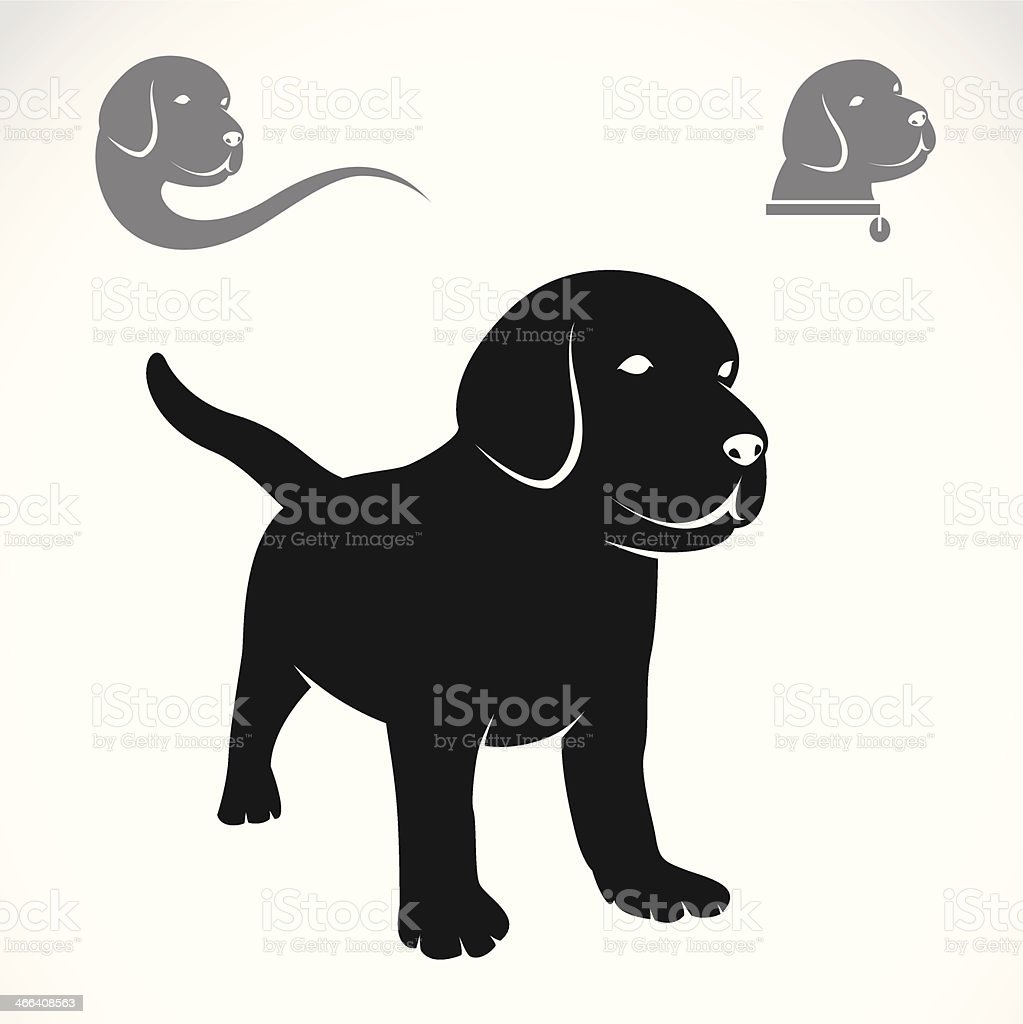 Vector image of an labrador puppies vector art illustration